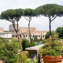 #Vue sur le Colisée depuis le forum Palatin