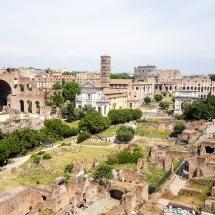 #Vue sur le forum Romain depuis le Mont Palatin